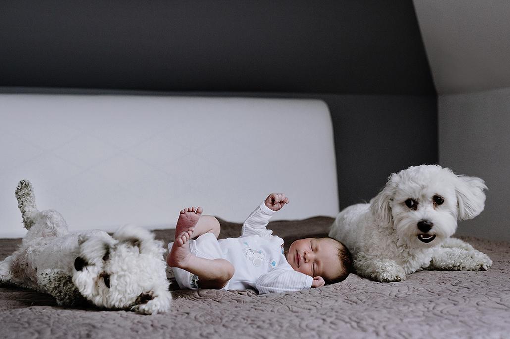 sesja noworodkowa sposoby na udane zdjęcia